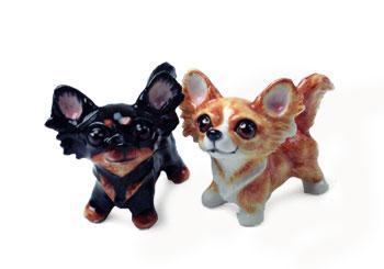 Chihuahua - langh�ret