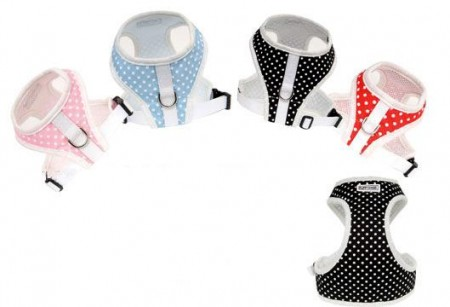 Puppy Angel Polkadot Harness