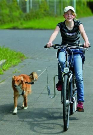 Dogman sykkelfeste